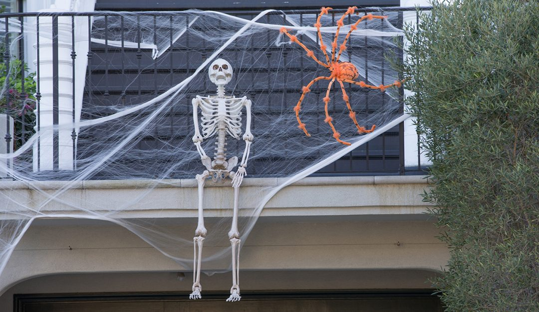 5 Tips for a Greener Halloween