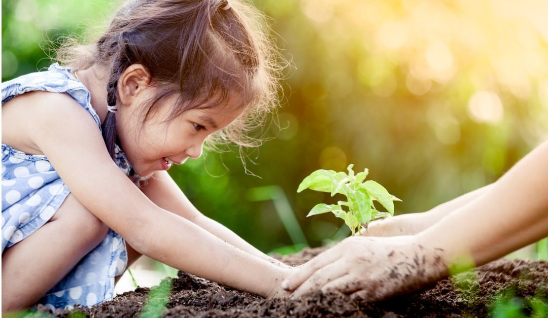 DIY Garden Beds That Your Kids Will Dig