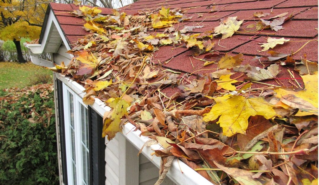 How to Clean Your Gutters in 5 Steps