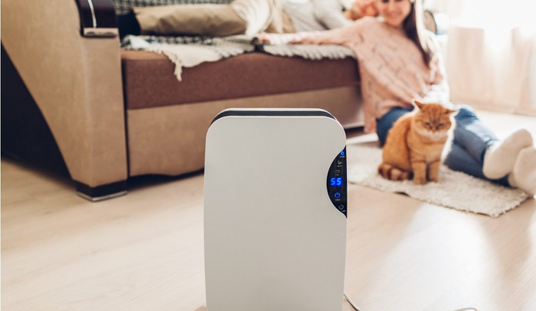 4 Reasons to Get an Air Purifier for Your Home