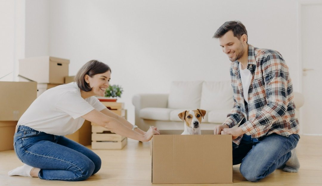 Helpful Tips for Moving Pets Into a New Home