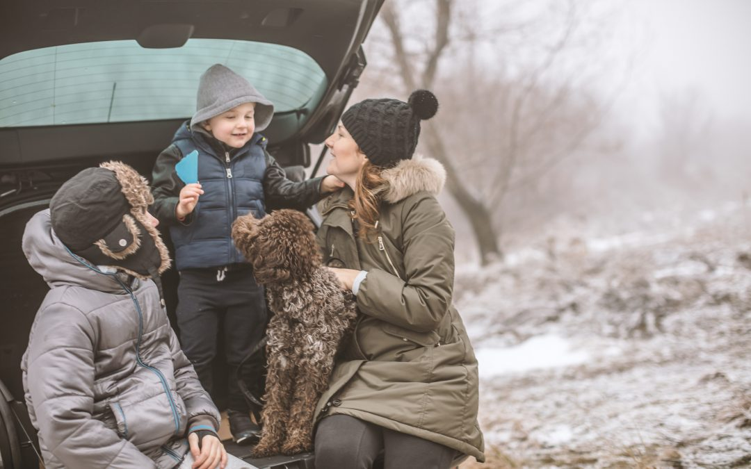 When Winter Thwarts Your Travel Plans, Insurance Can Help