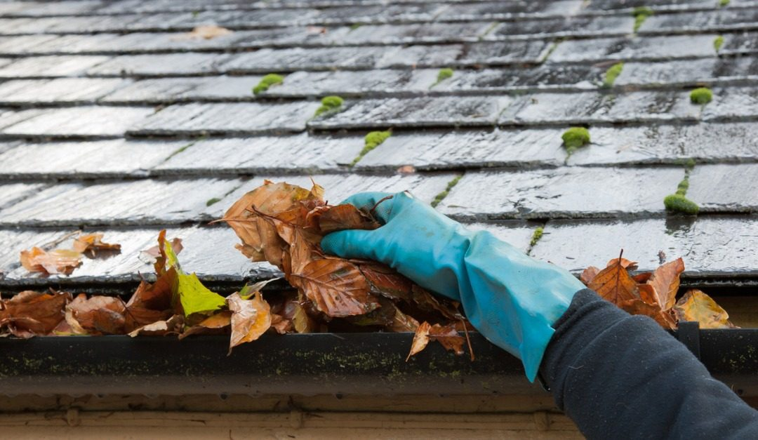 What Can Happen If You Don't Clean Your Gutters