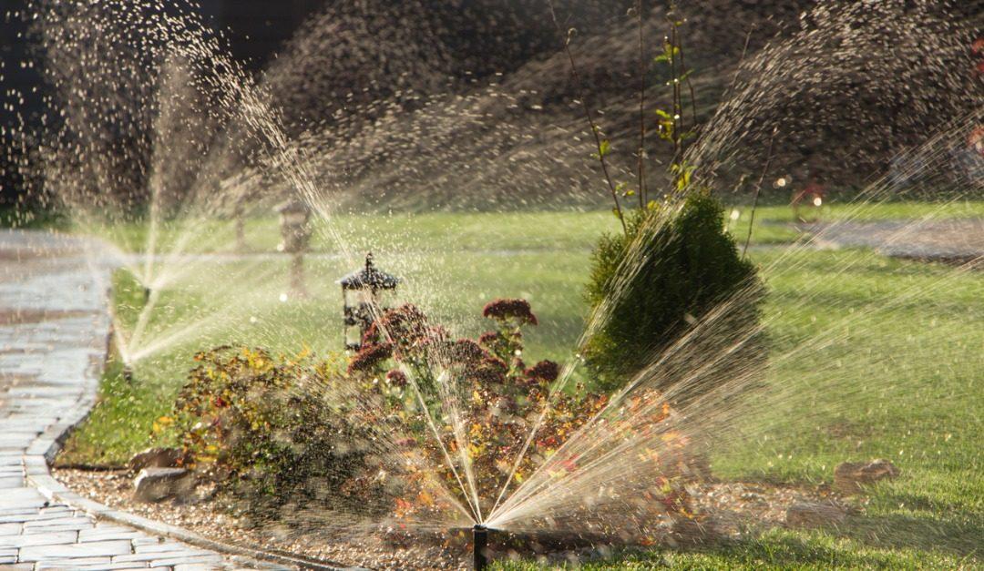Should You Install a Sprinkler System?