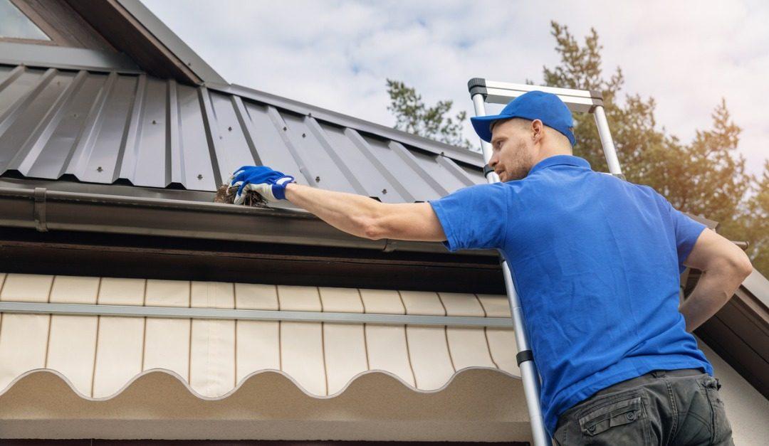 Vital Spring Home Maintenance Tasks to Perform