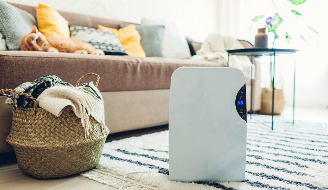 The Best Tech for Keeping Your House Clean