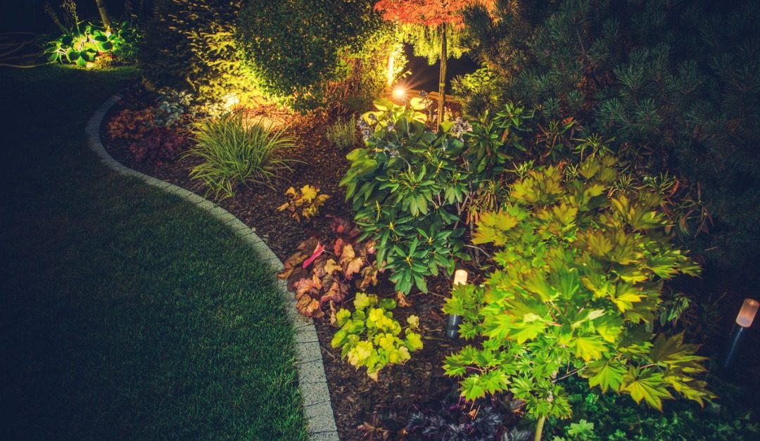 Set the Stage Each Night With Landscape Lighting