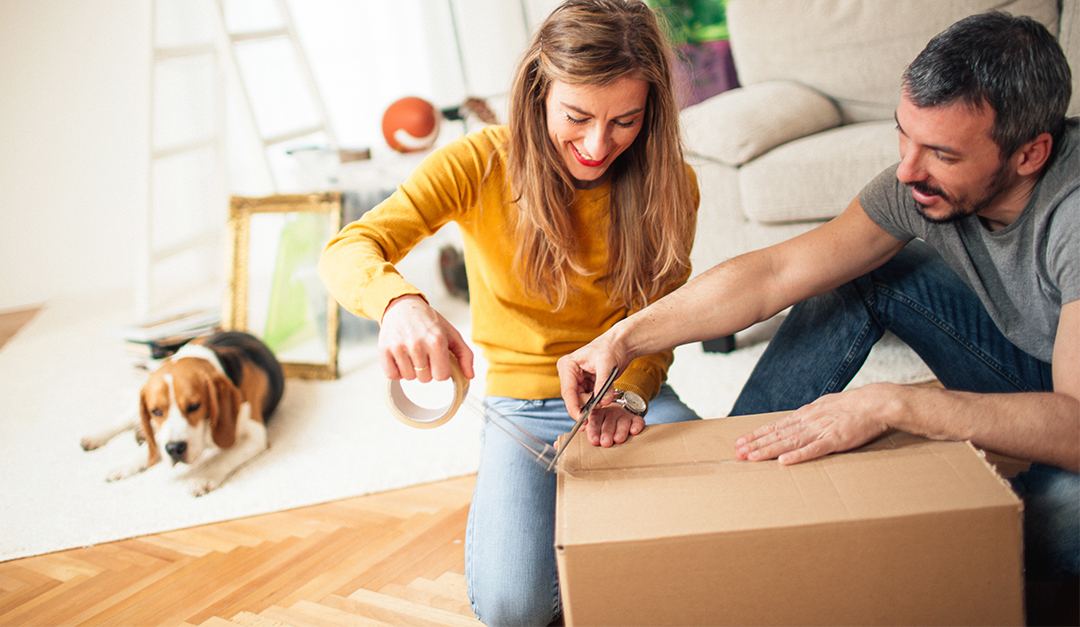 Make Moving Easy for Your Furry Friends