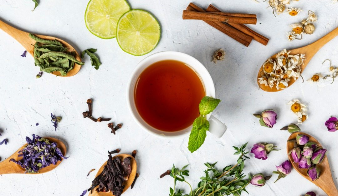 How to Grow Your Own Tea Garden at Home