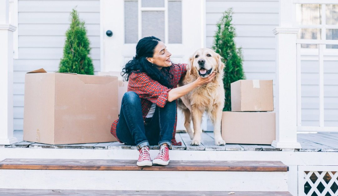 Helpful Tips for Moving With Pets