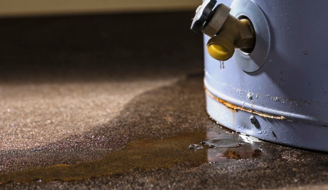 Signs That You May Have a Moisture Problem in Your Basement