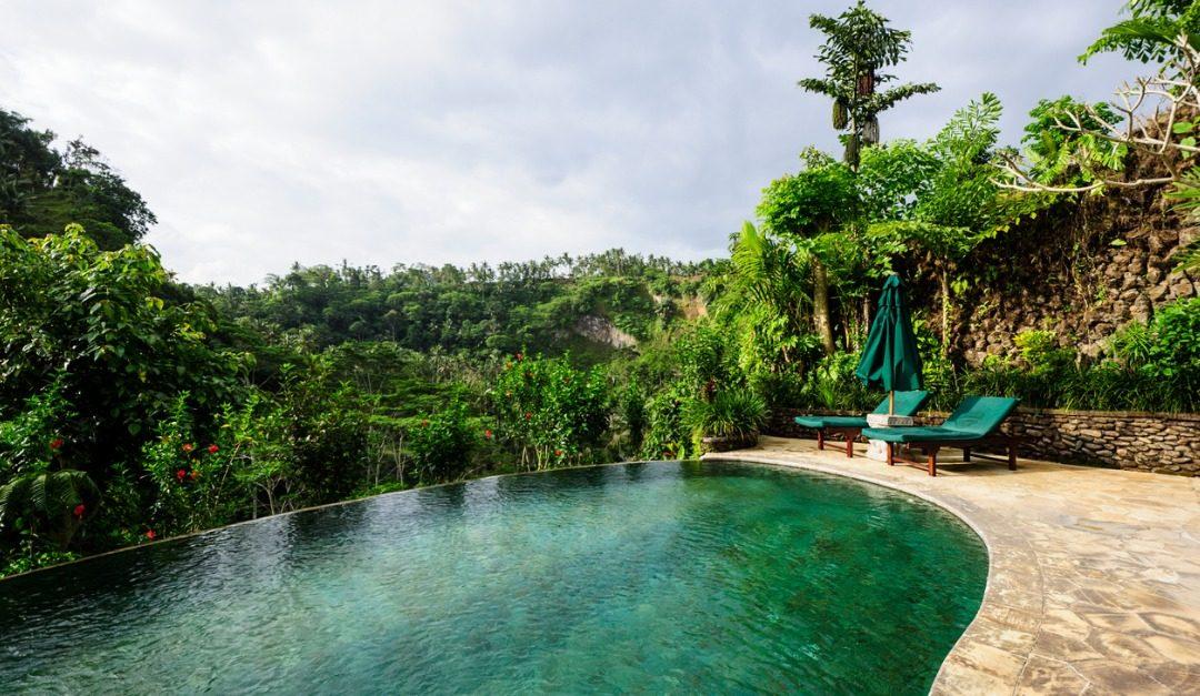 4 Reasons to Love Natural Swimming Pools