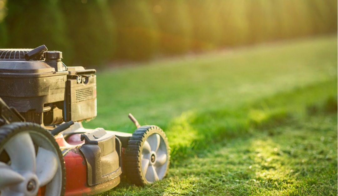 5 Mowing Mistakes to Avoid for a Healthy, Beautiful Yard