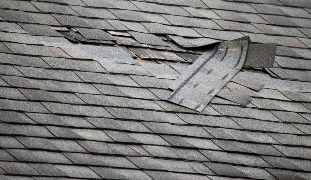 Top Signs Your Roof Needs Repair or Replacement