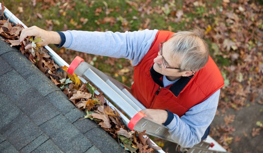 Everything You Need to Know About Cleaning Your Gutters