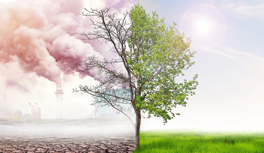 How Commercial Real Estate Investors Are Weighing Climate Change When Planning Future Business Strategies