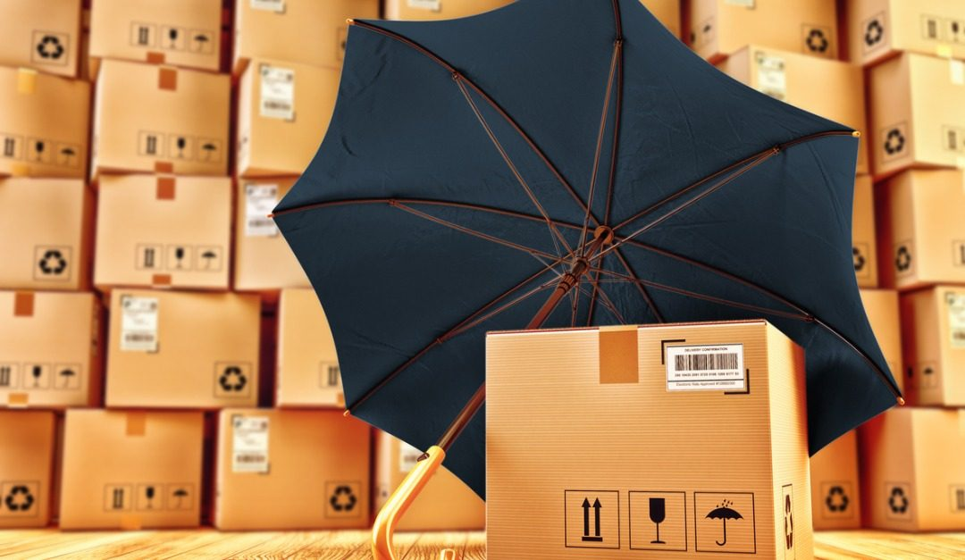 4 Items You May Want to Insure Before Moving