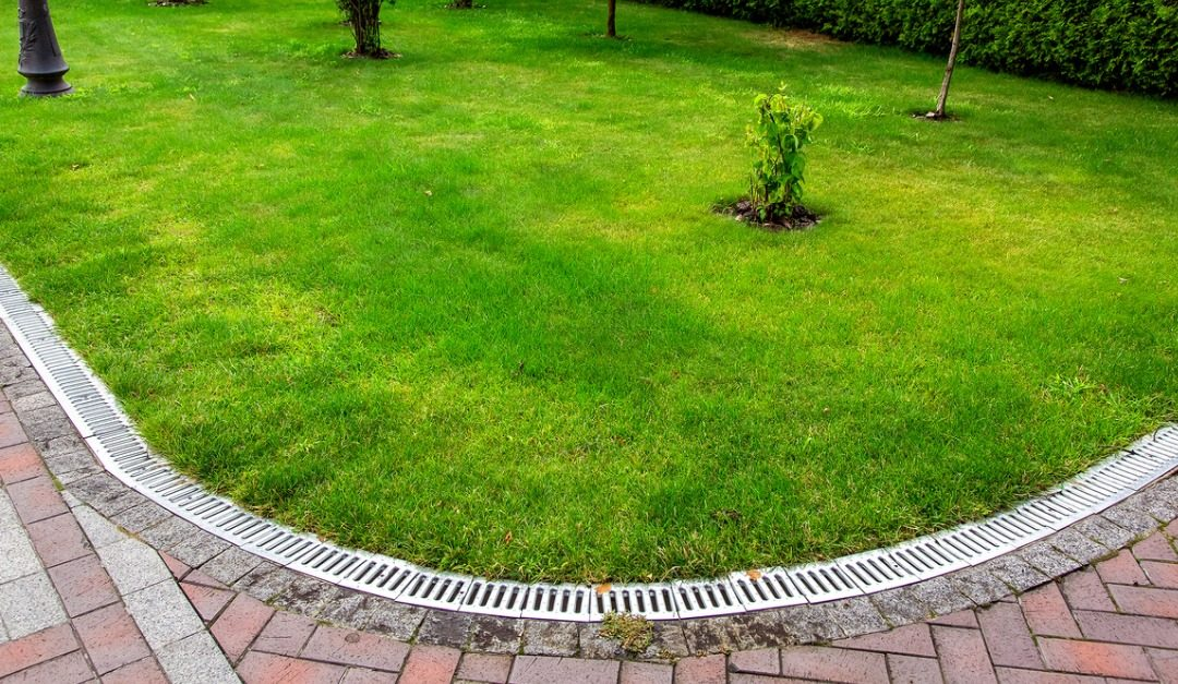 How to Change the Landscaping in Your Yard to Improve Drainage