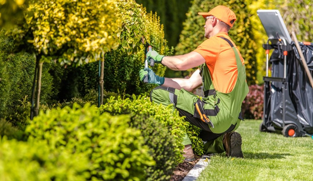5 Outdoor Improvements That Can Increase Your Home's Value