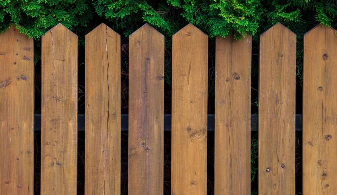 How to Protect Your Fence From Damage