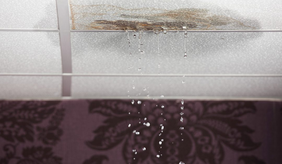 Water Damage: Causes and Prevention