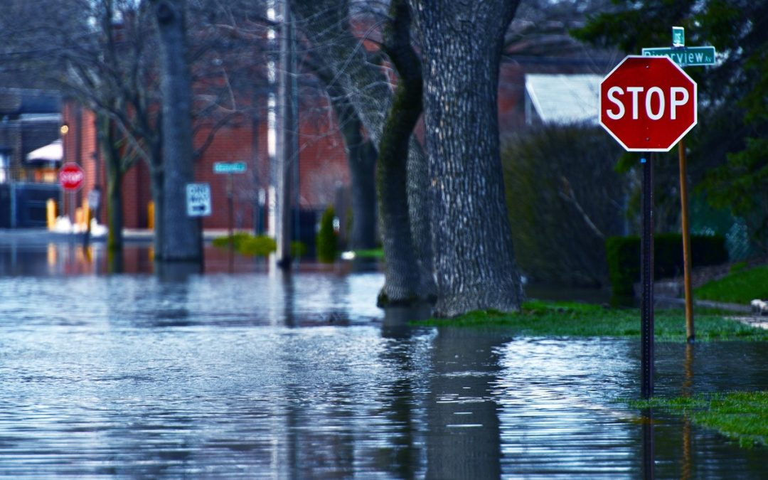 Plan Ahead: Preparing Your Home and Family Against Future Emergencies