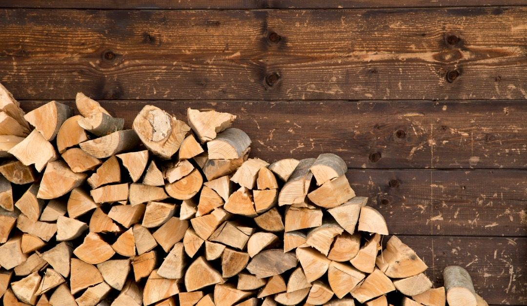 Why You Should Store Firewood Outdoors