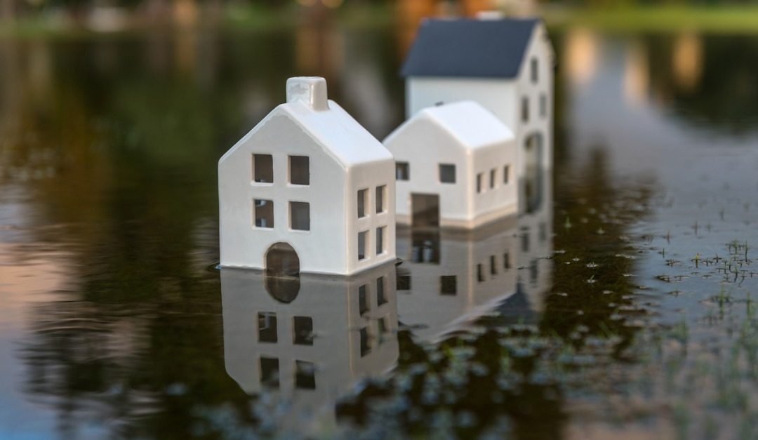 Why You Should Ask About Natural Hazards Before Buying a House