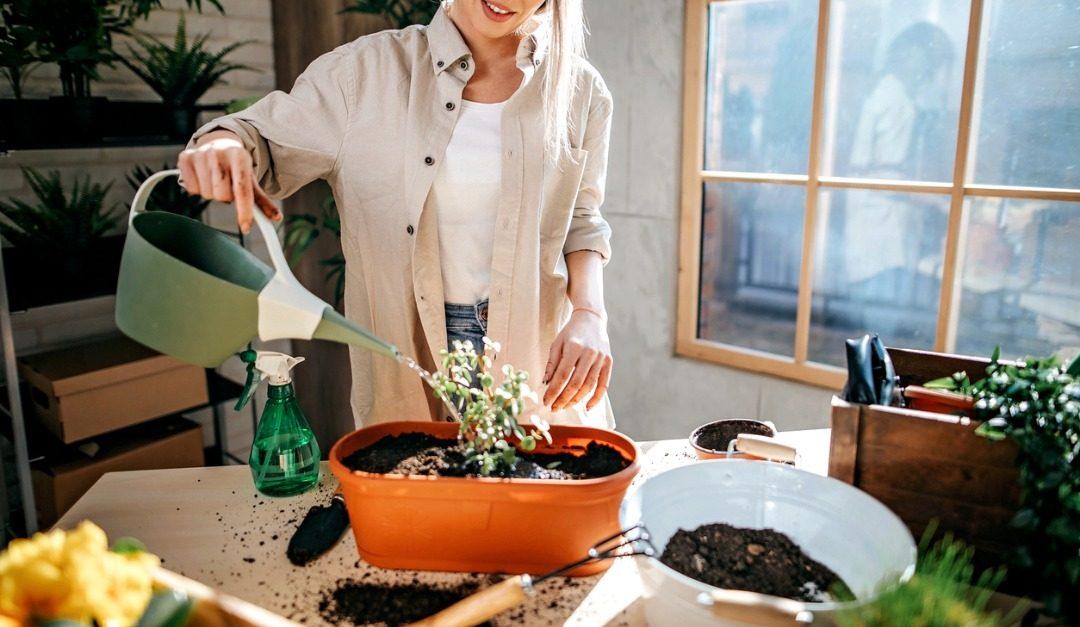 4 Ways You Can Enjoy Gardening at Home Year Round