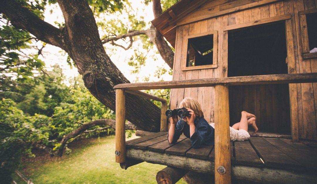 Backyard Upgrades Your Kids Will Love