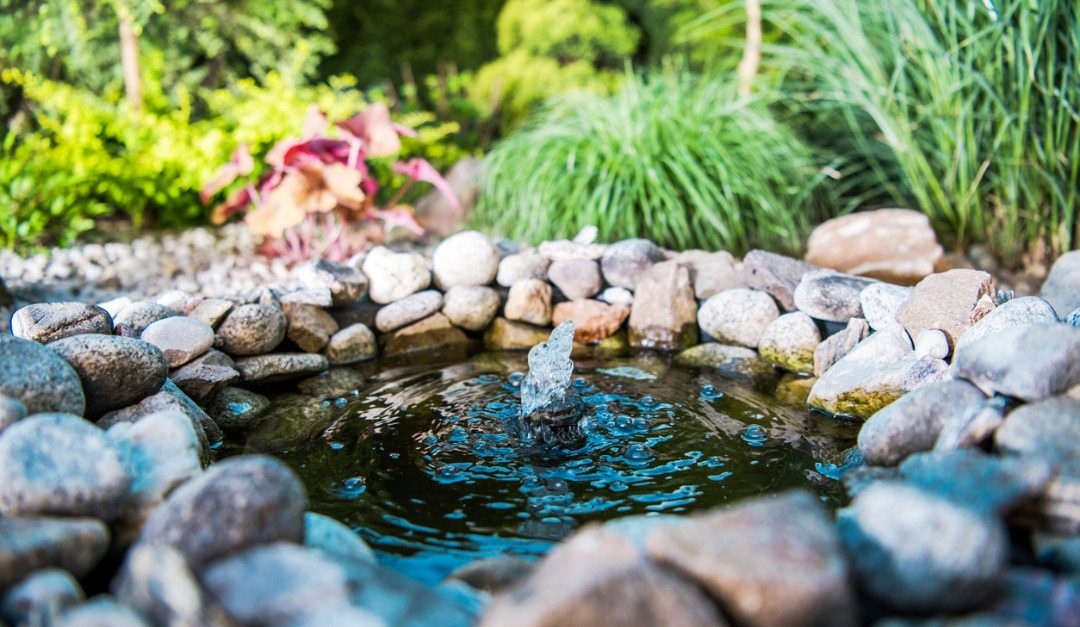 4 Landscaping Tips for a Peaceful Outdoor Area This Spring