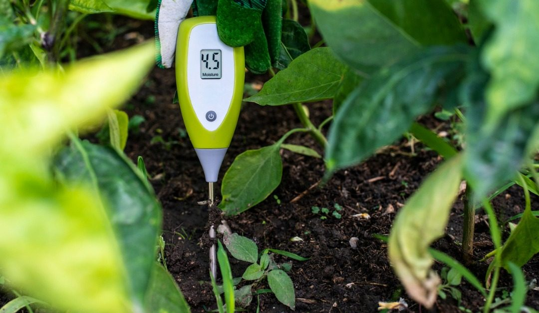 The Best Smart Home Technology for Gardeners