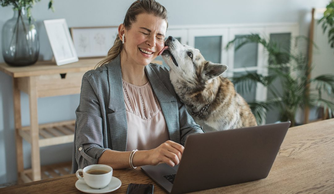 Mayo Clinic Q and A: How Owning Pets Can Lead to a Healthier Lifestyle