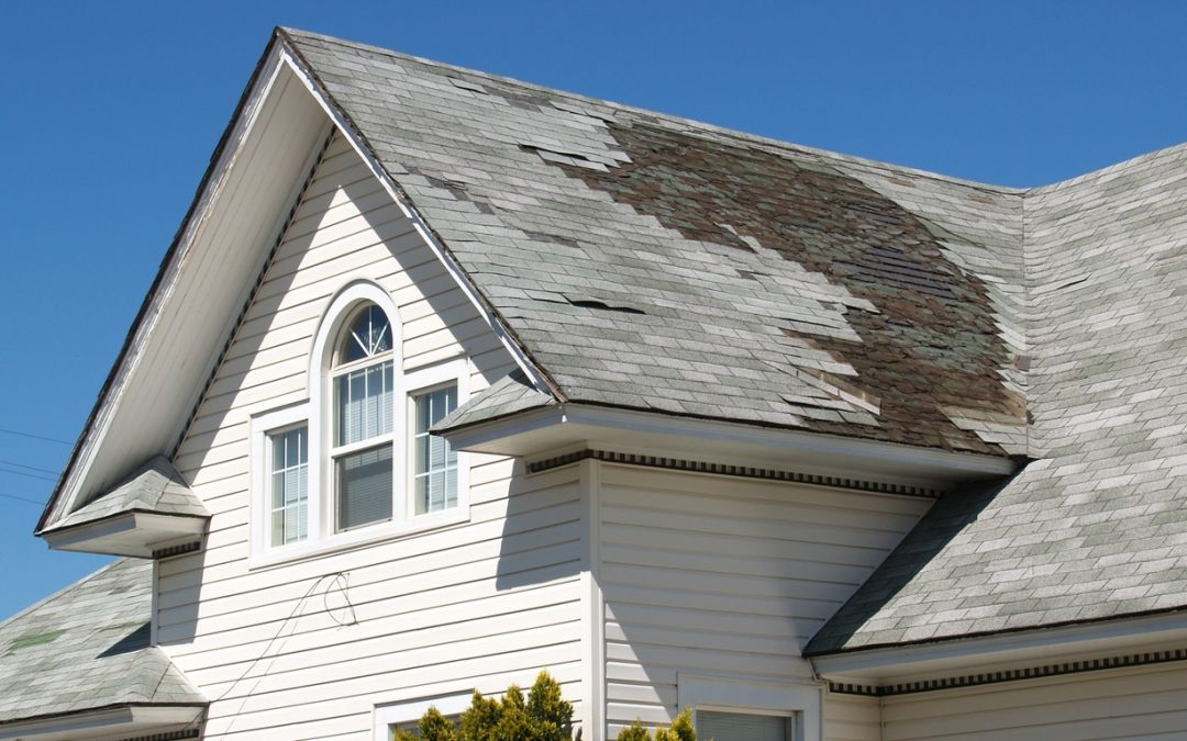 Force of Nature: The Most Likely Causes Behind Your Home's Roof Damage