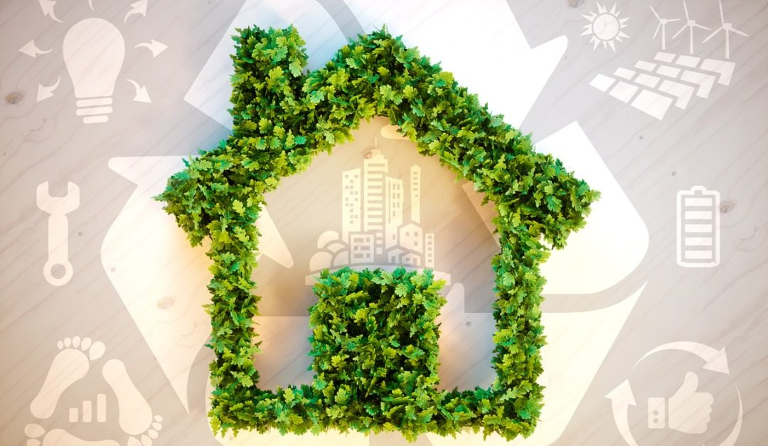 4 Sustainable Design Terms Everyone Should Know