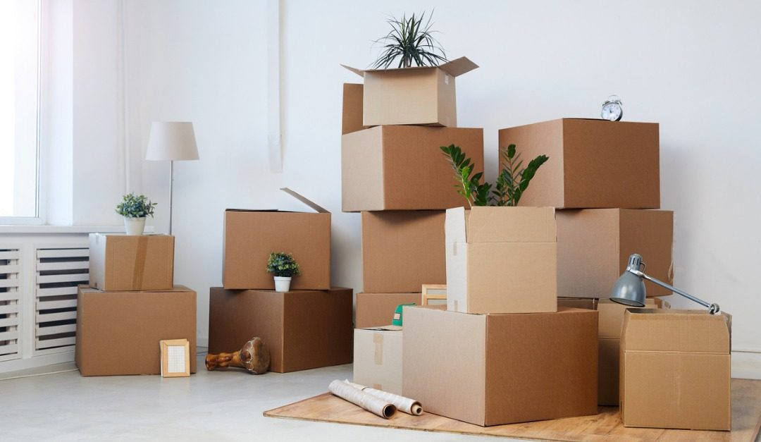 4 Amazing Specialists to Use When Moving