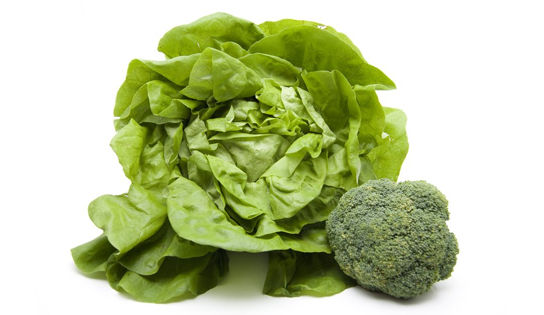 Recipe: Broccoli and Butterhead Lettuce Make for Easy, Artful Soup and Salad