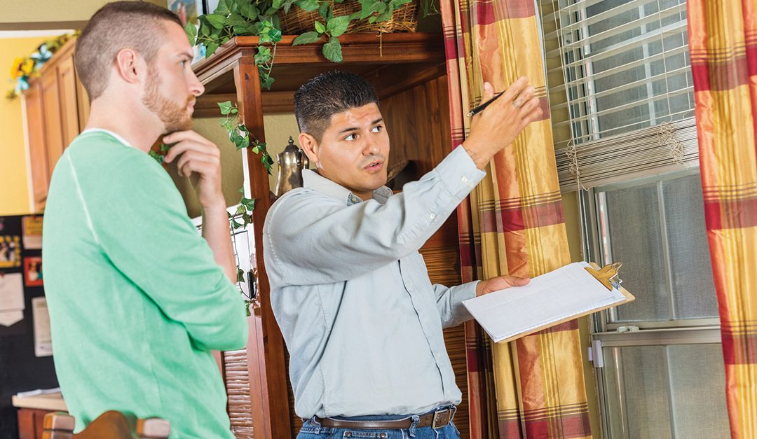 The Art and Business of Home Inspections
